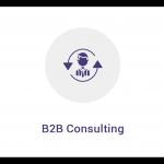 B2B-Consulting